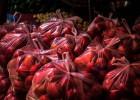 В России решили, какие товары являются биоразлагаемыми