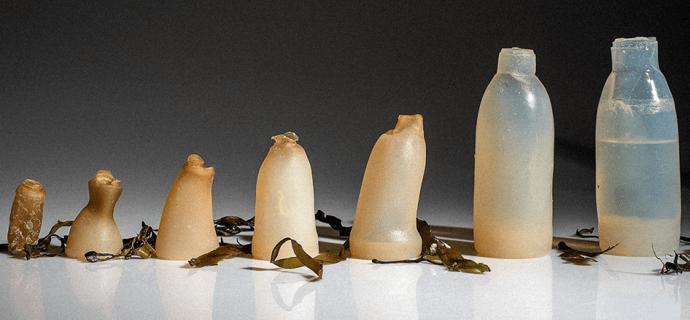 Студент придумал биоразлагаемые бутылки из водорослей