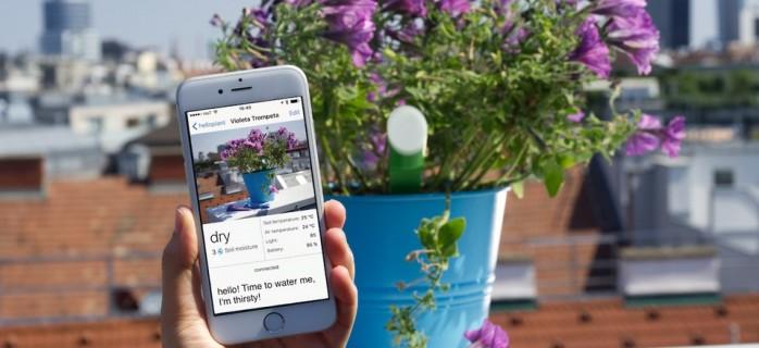Три гаджета для любителей комнатных растений
